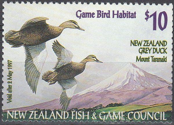 1996 NZ Grey Duck