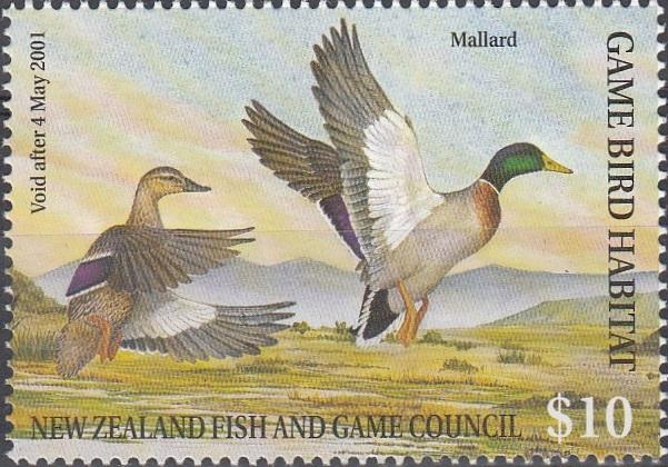 2000 Mallard