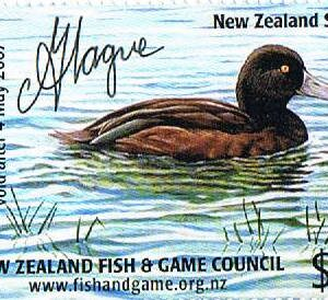 2006 NZ Scaup