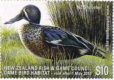 2009 NZ Shoveler